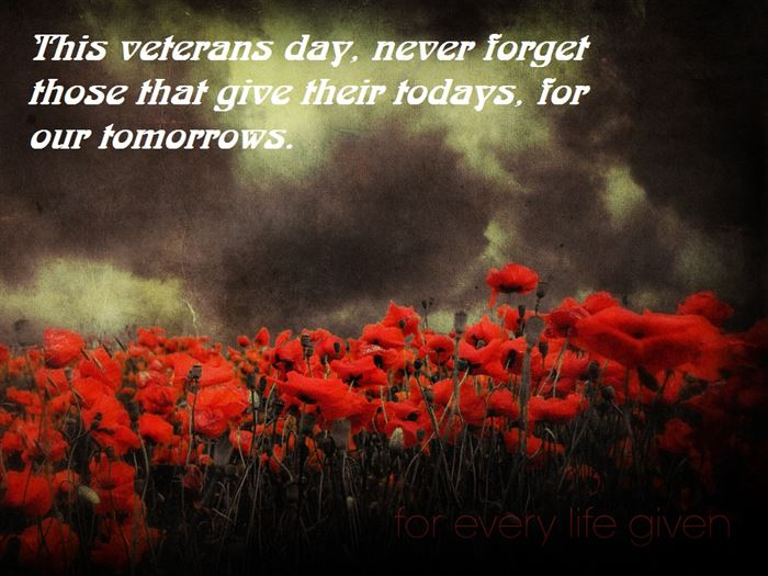 Best Veterans Day Quote For Husbands