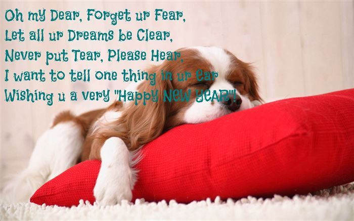 Funny Happy New Year Wishes For Facebook Post