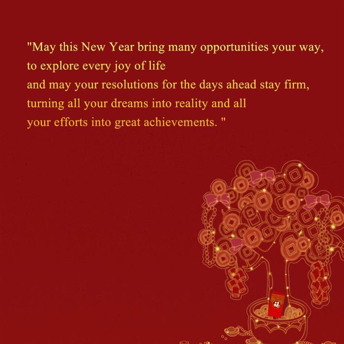 Best Happy Chinese New Year Wishes Messages