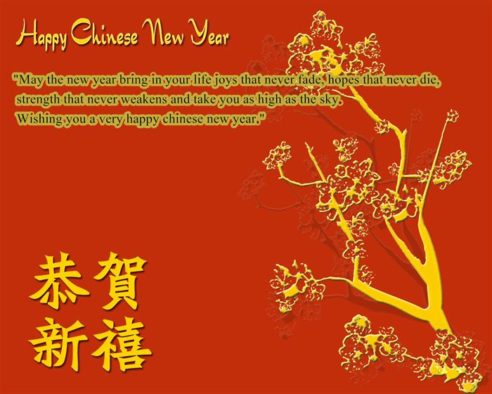 Beautiful Happy Chinese New Year Wishes Sample