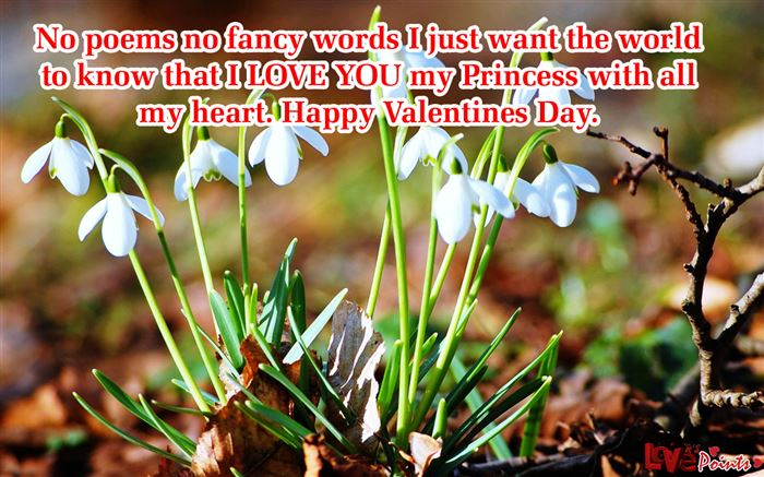 Romantic Happy Valentine's Day Sayings For Husbands