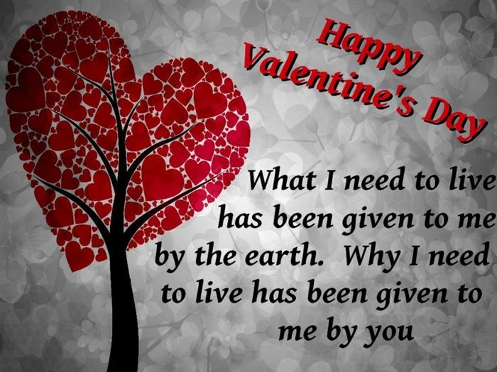 Unique Happy Valentine's Day Messages For Husbands