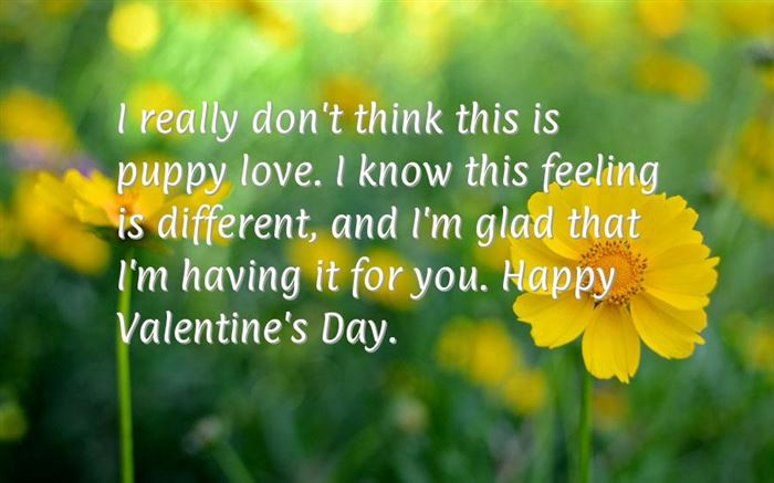 Romantic Happy Valentine's Day Greetings Sms