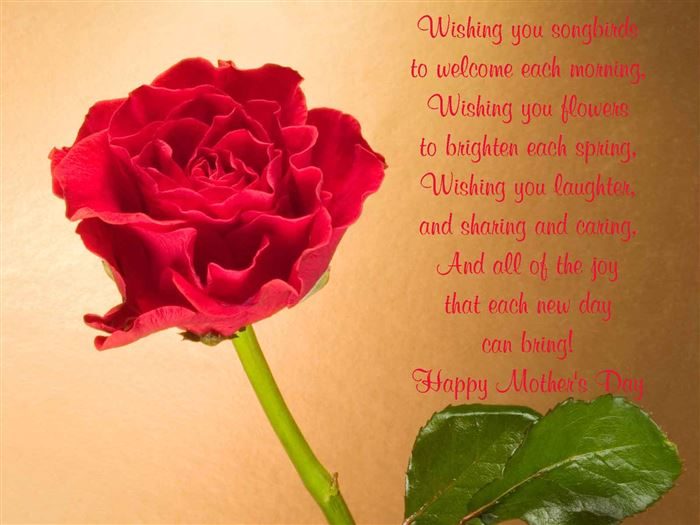 Beautiful Happy Mother's Day Greeting Card Messages For Wife