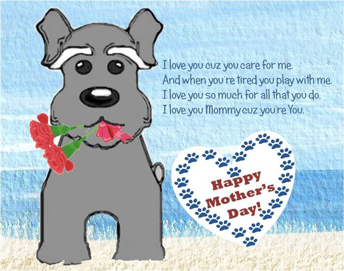 Top Funny Happy Mother's Day Greeting Card Sayings