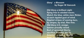 Famous Happy Flag Day Poems For Children