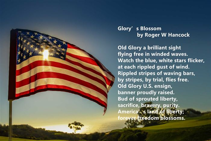 Meaningful Happy Flag Day Poems For Children