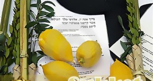 Best Traditional Greetings For Sukkot