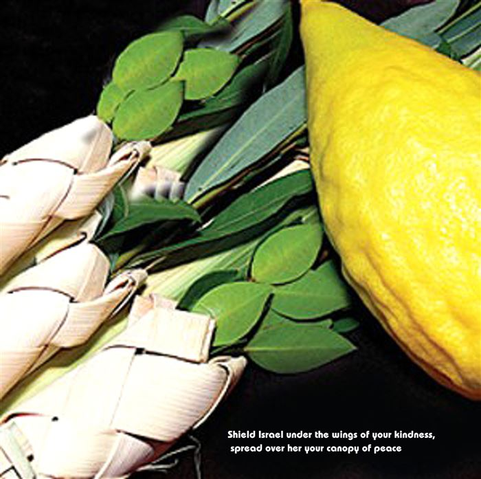 Short Happy Sukkot Lulav Etrog Prayer