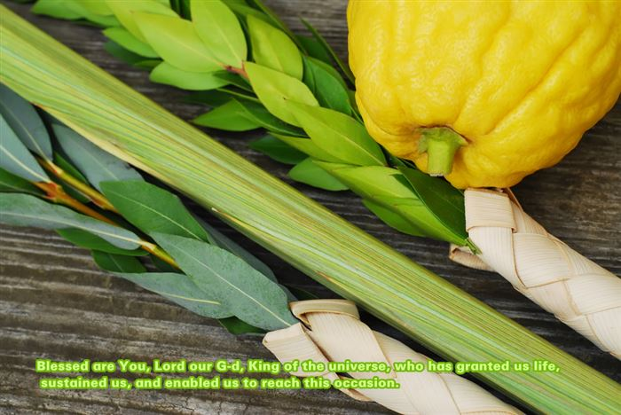 Short Blessings For First Night Of Sukkot