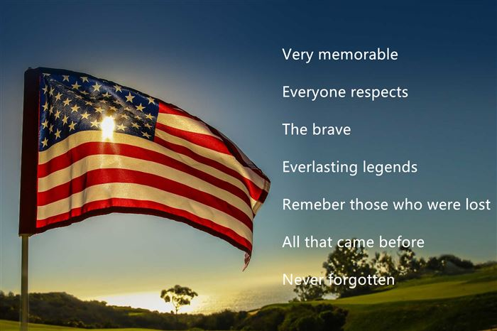 Unique Happy Veterans Day Acrostic Poems Template