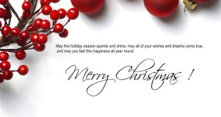 Best Merry Christmas Card Messages For Family