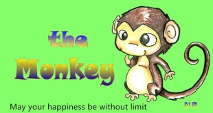 Best Chinese New Year Greetings Phrases Monkey