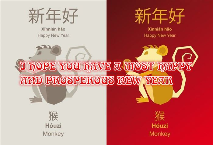 Inspirational Chinese New Year Wishes Messages Monkey