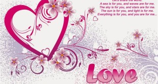 Cute Happy St Valentines Day Message Images
