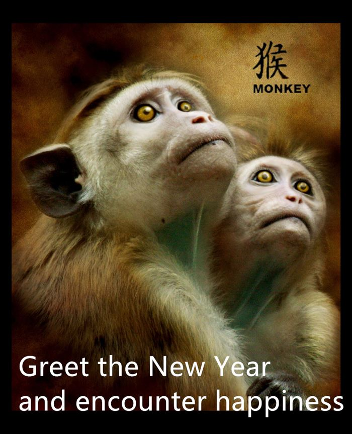 Short Chinese New Year Wishes Greetings Monkey
